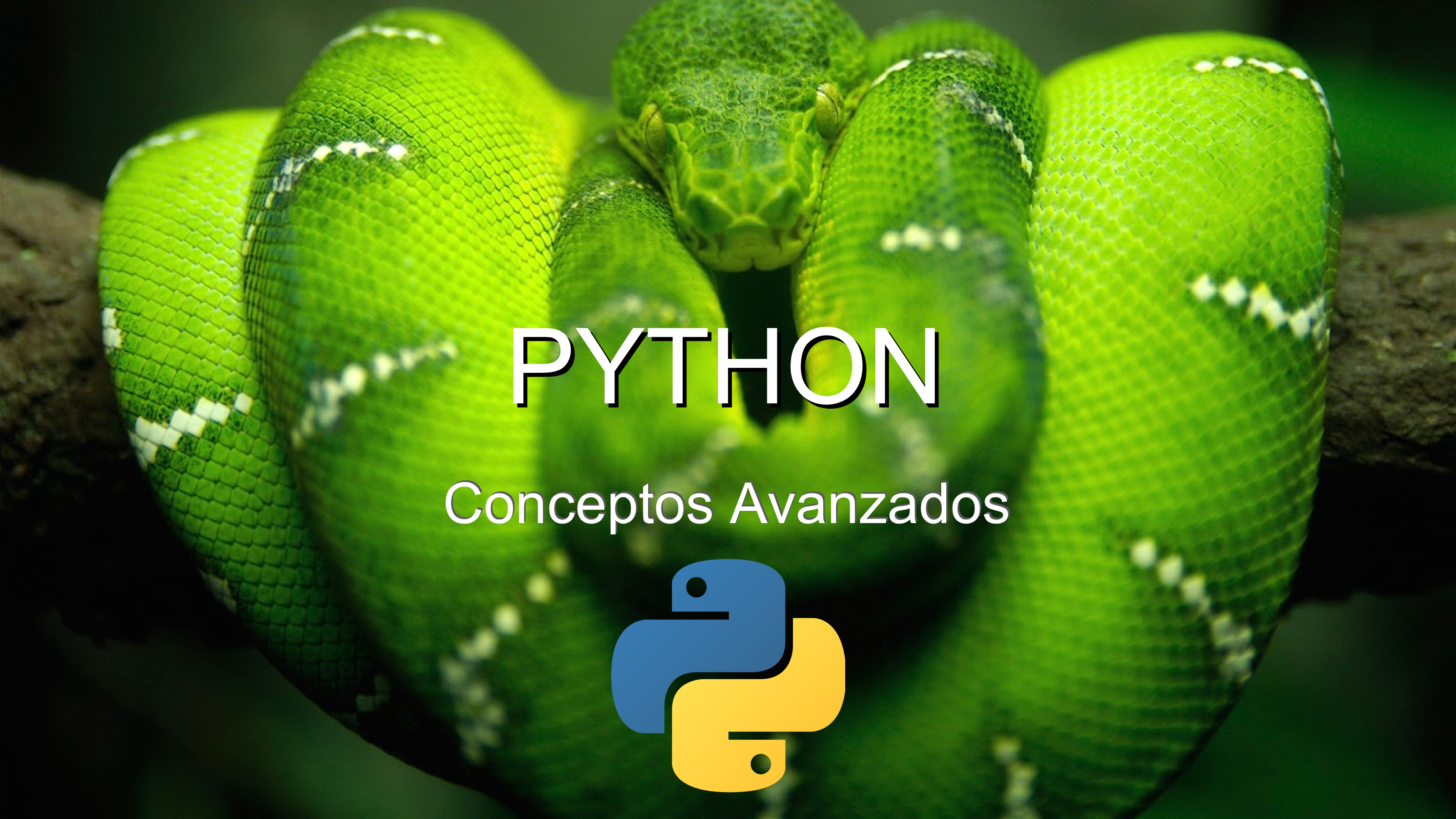 Exam It Solutions Dont Fear Get Certified We Help You Python